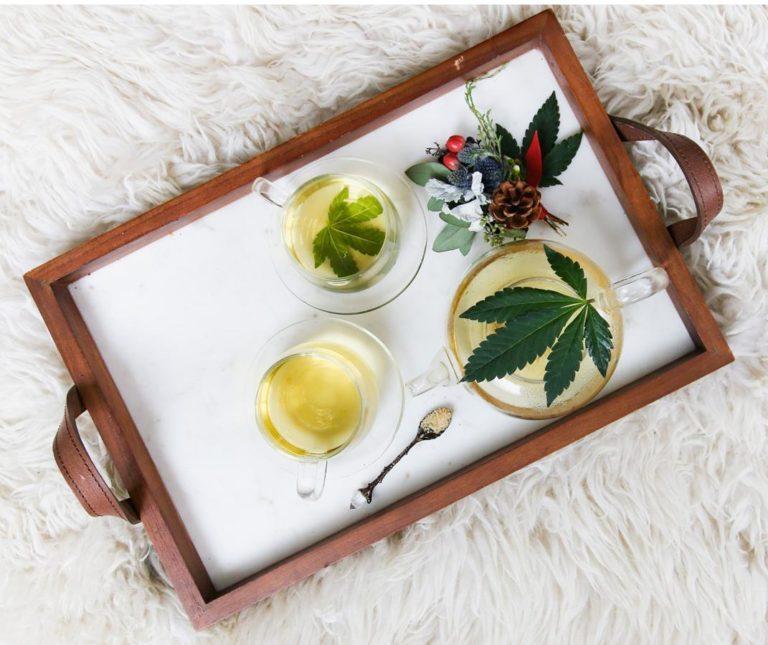 Najlepsza odmiana marihuany – mazar dutch passion
